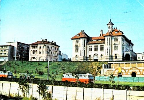 Constructia structurii de protectie si conservare a Mozaicului Roman 1960-1970.